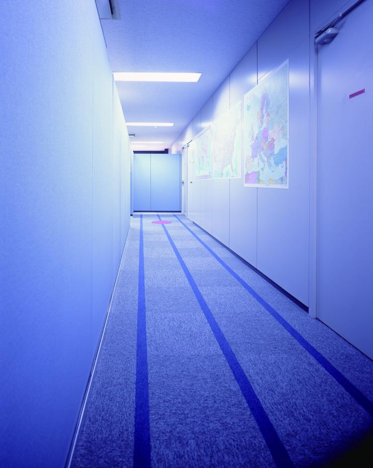 絨毯に流れるラインで近未来の雰囲気を